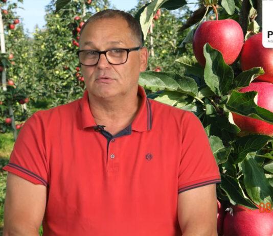Komunikat sadowniczy PROCAM 18 z 09.09.2021