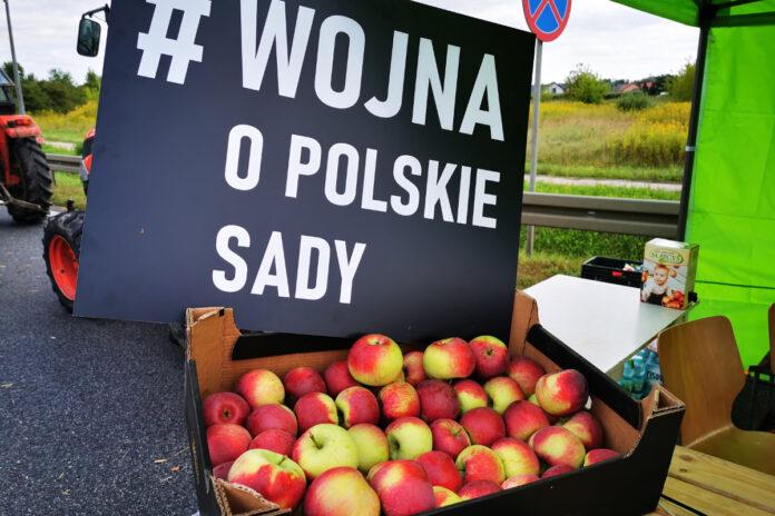 wojna o polskie sady