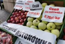 Sadownicy nie powinni sprzedawać jabłek deserowych poniżej 2 zł/kg