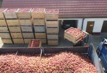 Aktualne ceny koncentratu jabłkowego